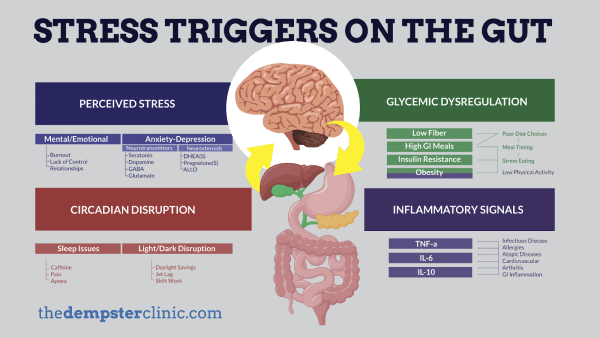 stress triggers on gut